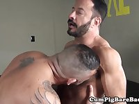 Mature dilf bear barebacked by pierced top