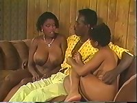 Black Chicks In Heat