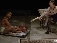 Caged ebony slave Bella Vendetta abused by mistress Brook Rain