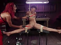 Daisy Ducati and Nikki Darling enjoy lesbian sex and BDSM game