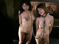 CMF-017 Livestock Breast Milk Wives Shimada Sae & Murai Shiho